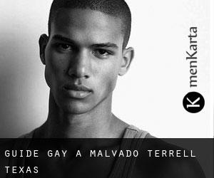 Guide Gay à Malvado (Terrell, Texas)