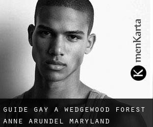 guide gay à Wedgewood Forest (Anne Arundel, Maryland)