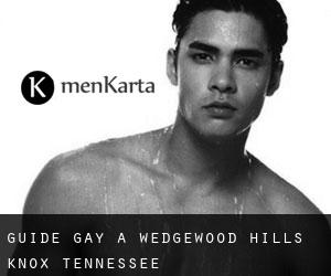 guide gay à Wedgewood Hills (Knox, Tennessee)